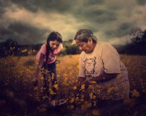 Virtual Indigenous Film Series